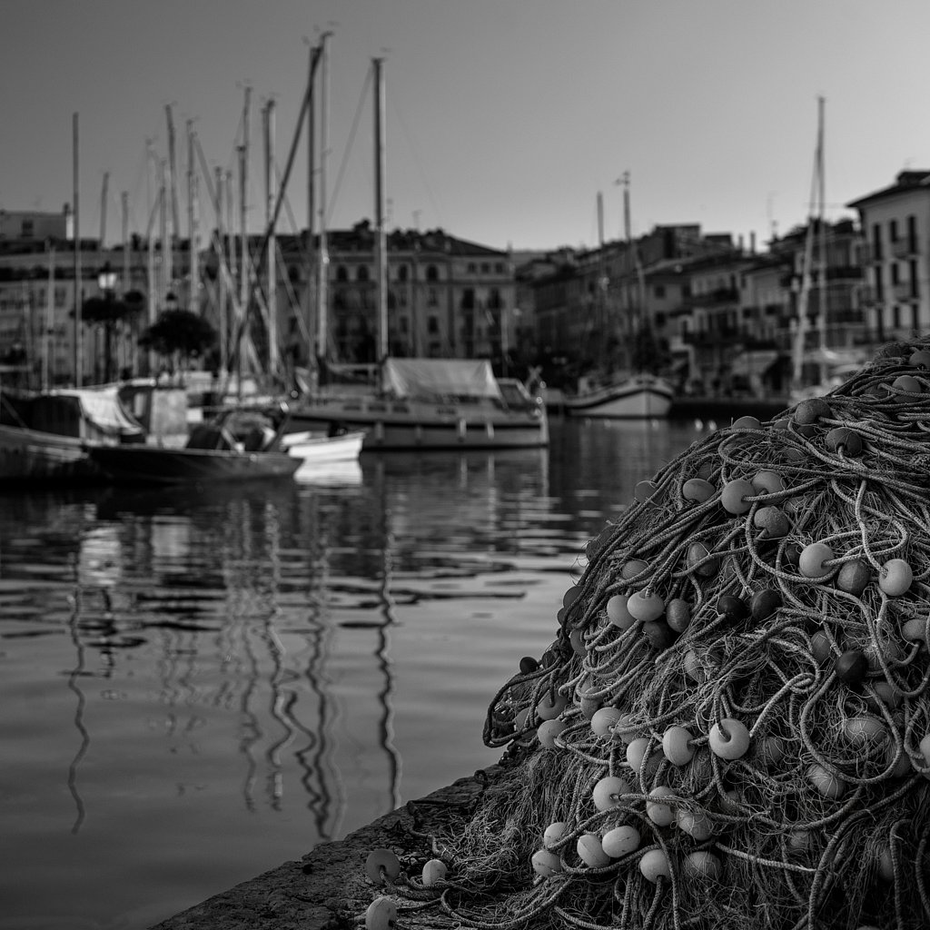 The fisher net